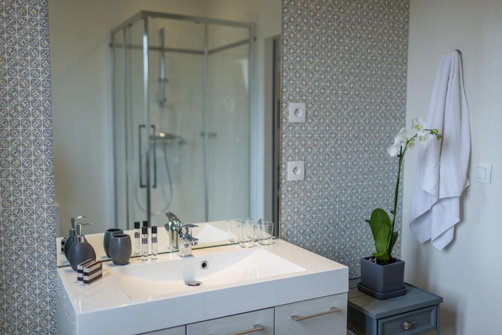 Salle de bain équipée d'une douche