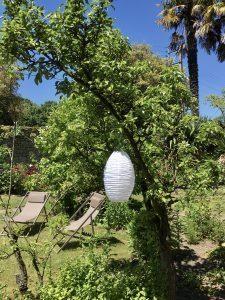 jardin arboré, parc, palmiers saint malo